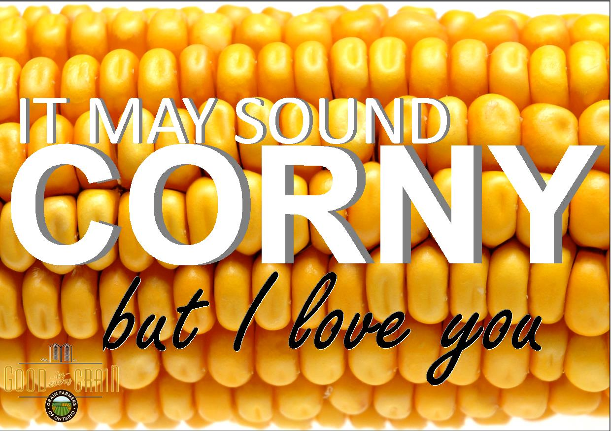 It may sound corny but I love you Valentine