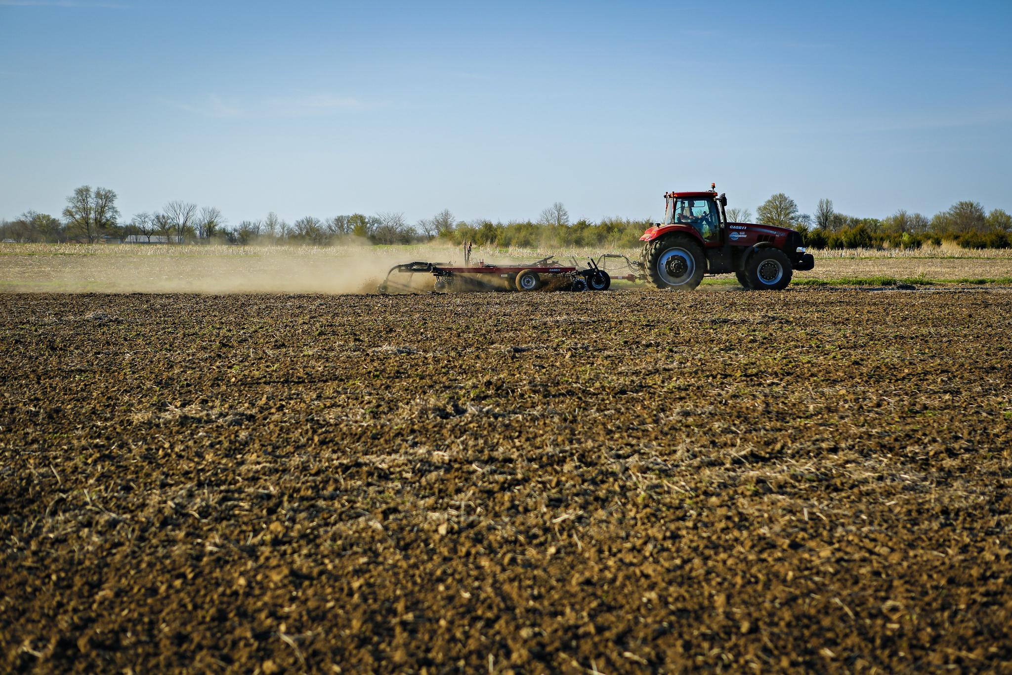 Corn Variety Planting