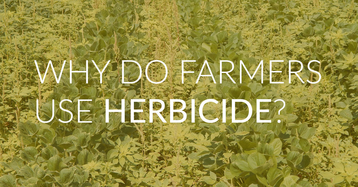 Why do farmers use herbicides?