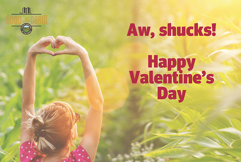 Aw shucks! Happy Valentine's Day! Valentine