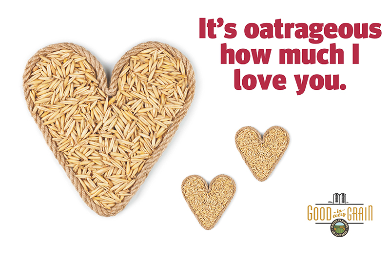 It's oatrageous how much I love you. Valentine