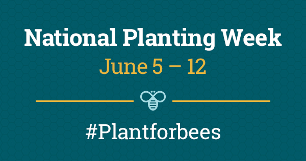 BeesMatter National Planting Week logo