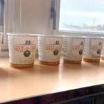 a line of paper cups with growing seeds in them stands in front of a classroom window