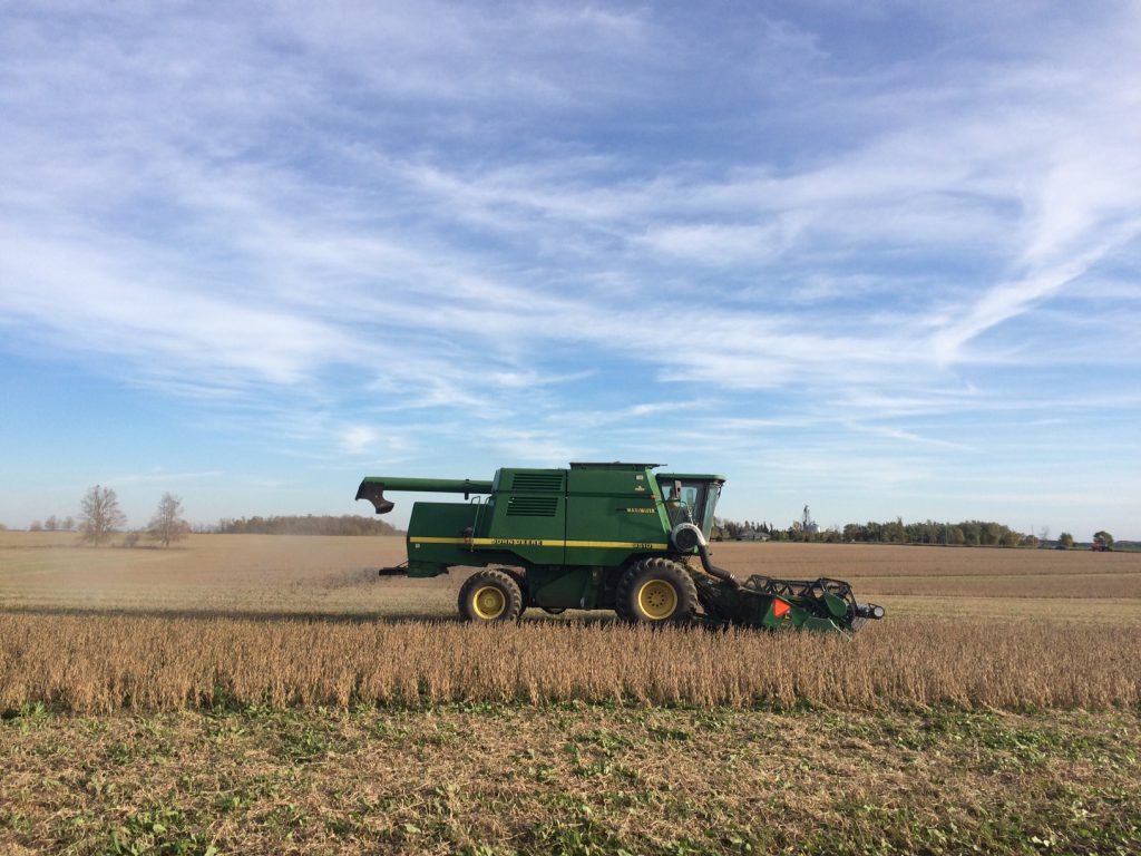 green combine harvesting soybeans