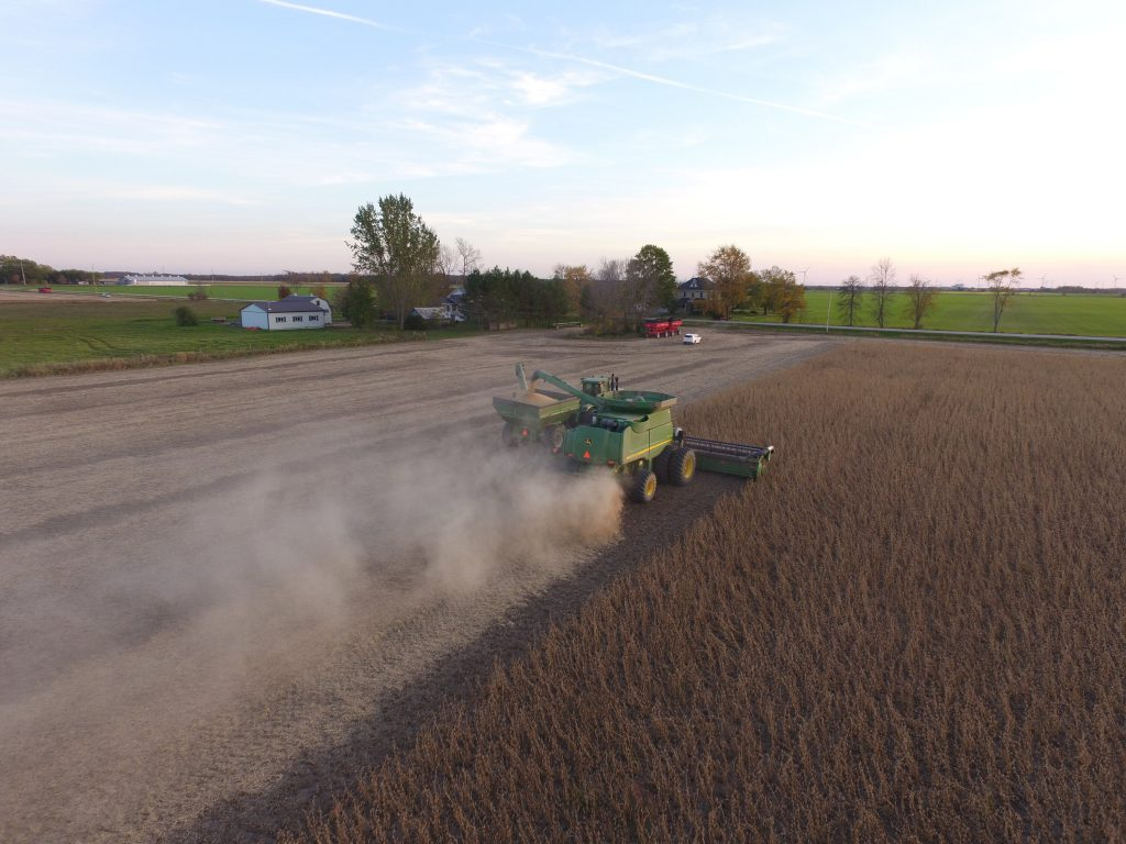 combine harvesting mature brown soybeans in a grain field in Ontario, Canada, and unloading mature soybeans into a grain buggy.